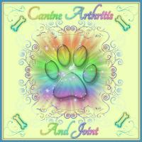 Canine Arthritis And Joint - Holistic Remedies