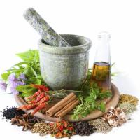 Natural Treatments and Supplements For Cancer in Dogs
