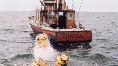 ORCA BOAT STERN